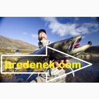 Товары для рыбалки. Самые низкие цены