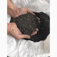 Семена вика озимая (vicia villosa)