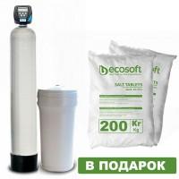 Фильтр обезжелезивания и умягчения воды Ecosoft FK1665CIMIXA