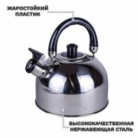 Чайник из нержавеющей стали А-Плюс 1321 со свистком, 2, 5 л